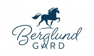 Logo2 Berglund